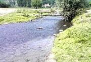 Река Ветерница